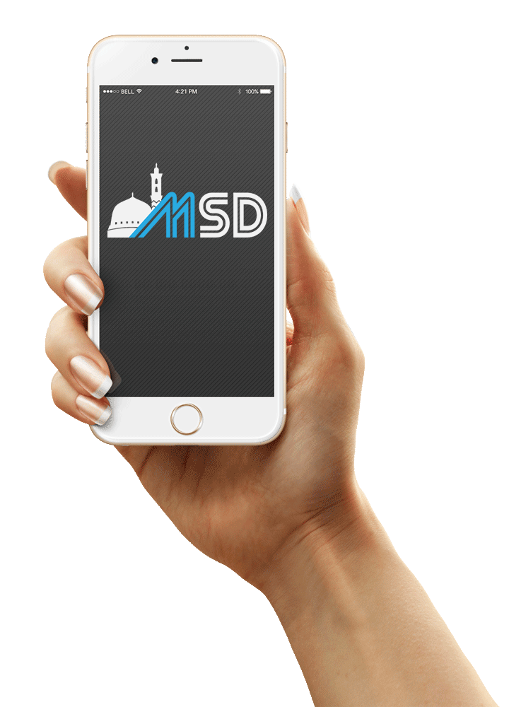 msd-iphone6-hand.png